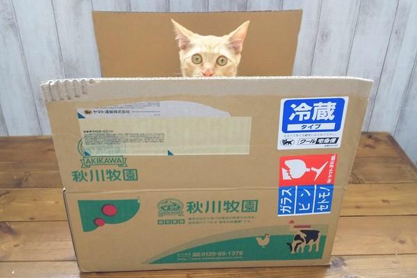 秋川牧園お試しセット外箱